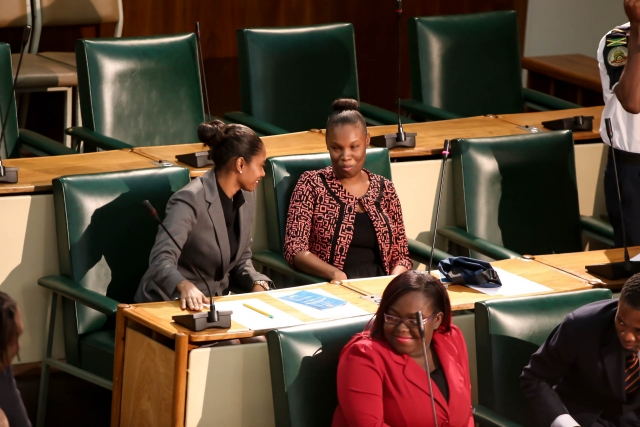 2016 Sitting - National Youth Parliament, Jamaica (87)