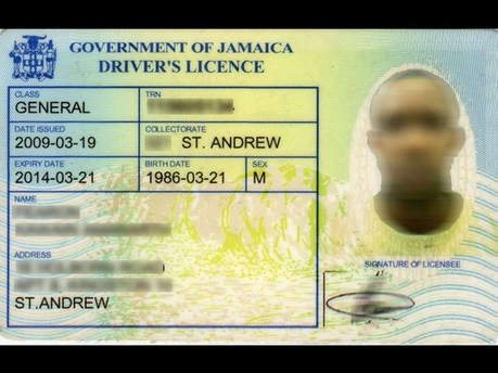 Getting Your Driver's Licence | Youth Information Centers
